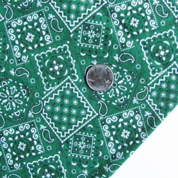 Green Bandana Fabric face masks